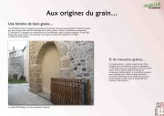 aux-origines-du-grain-copie